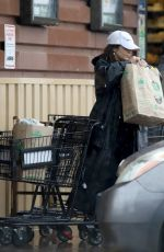 VANESSA HUDGENS at Grocery Shopping in Los Angeles 03/14/2020