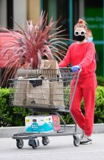 ALESSANDRA TORRESANI Wearin Mask and Gloves Out Shopping in Los Angeles 04/20/2020