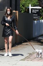 ANA DE ARMAS and Ben Affleck Out with Their Dog in Venice Beach 04/16/2020