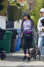 CALISTA FLOCKHART Out with Her Dogs in Los Angeles 04/03/2020