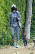 CALISTA FLOCKHART Out with Her Dogs in Los Angeles 04/17/2020