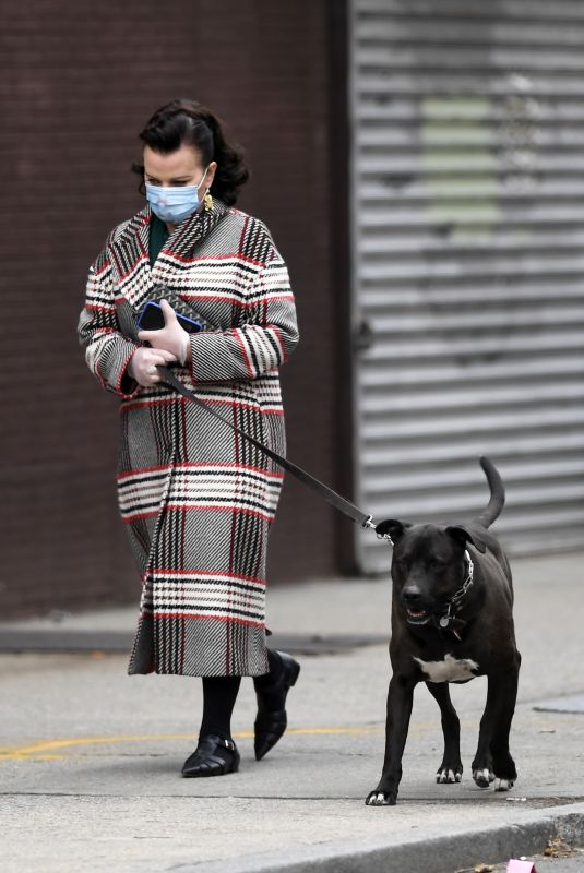 DEBI MAZAR Out with Her Dog in New York 04/17/2020