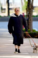 DEBORRA-LEE FURNESS Out with Her Dogs in New York 03/31/2020