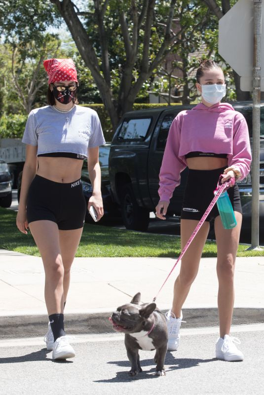 DELILAH and AMELIA HAMLIN Wearing Masks Out with Their Dog in Beverly Hills 04/21/2020