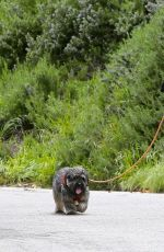 ELIZABETH BANKS Out with Her Dog in Hollywood Hills 04/07/2020