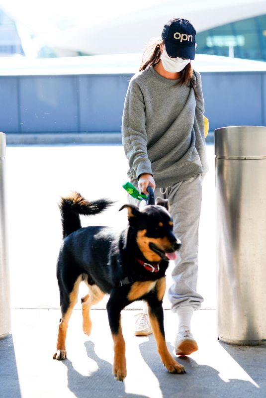 EMILY RATAJKOWSKI Wearing Mask with Her Dog at JFK Airport in New York 04/08/2020
