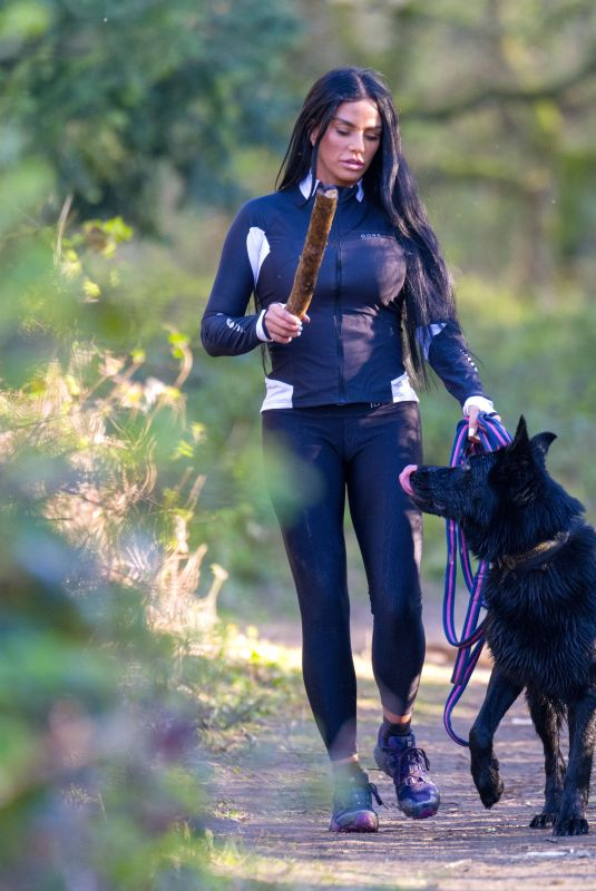 KATIE PRICE Out with Her Dog at a Park in Brighton 04/06/2020