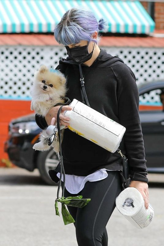 KELLY OSBOURNE Out with her Dog in Los Angeles 04/20/2020