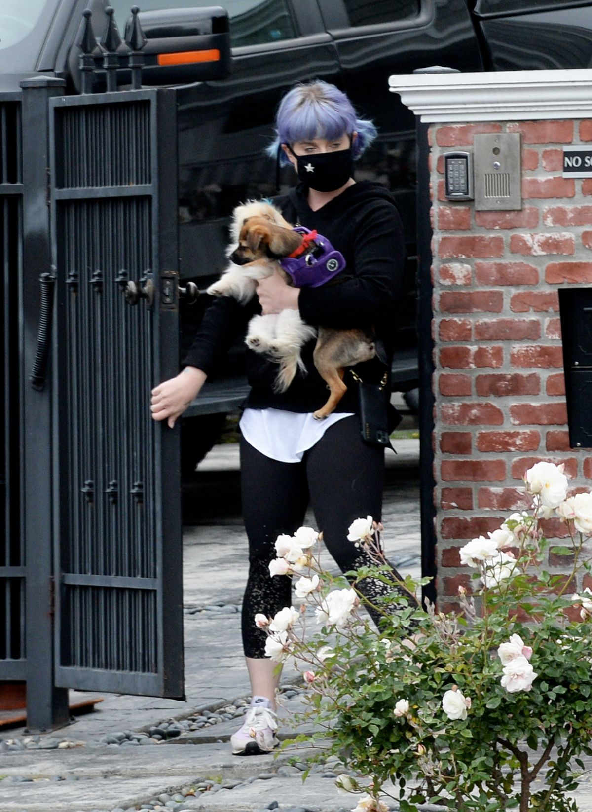 KELLY OSBOURNE Out with Her Dogs in Los Angeles 04/13/2020 ...Kelly Osbourne 2020 Picture