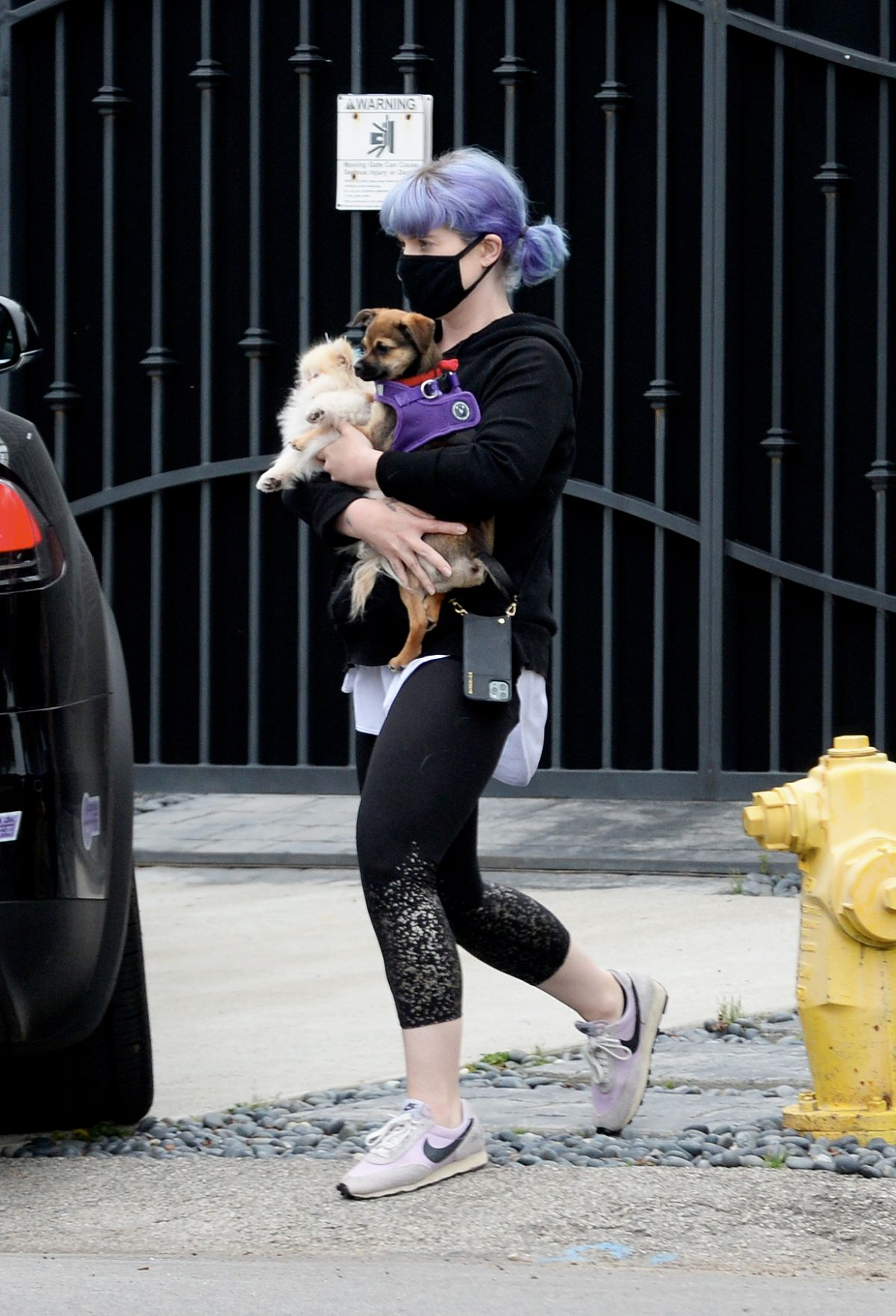 KELLY OSBOURNE Out with Her Dogs in Los Angeles 04/13/2020 ...
