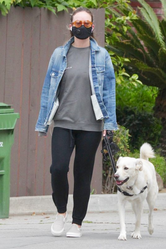 OLIVIA WILDE Waring a Black Mask Out with Her Dog in Los Angeles 04/05/2020
