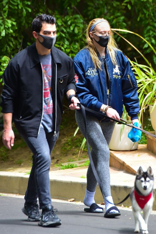 Pregnant SOPHIE TURNER and Joe Jonas Out with Their Dogs in Los Angeles 04/21/2020