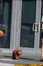 ROOSMARIJN DE KOK Out with Her Dog in Miami 04/02/2020