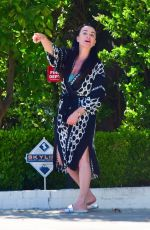 KYLE RICHARDS Out and About in Beverly Hills 05/05/2020