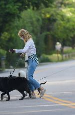 LAURA DERN Out with Her Dogs in Santa Monica 05/07/2020