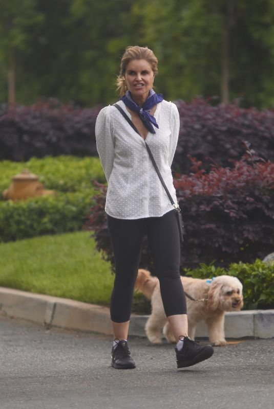 MARIA SHRIVER Out with Her Dog Brentwood 05/07/2020
