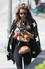 ALESSANDRA AMBROSIO Out and About in Santa Monica 06/22/2020