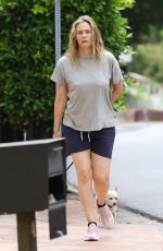 ALICIA SOLVERSTONE in Shorts Out with Her Dogs in Los Angeles 06/17/2020