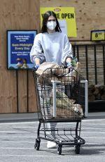 AMELIA HAMLIN Out Shopping in Studio City 06/06/2020