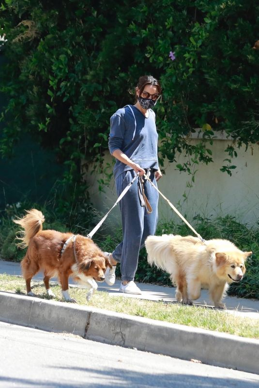 AUBREY PLAZA Walks Her Dogs Out in Los Feliz 06/13/2020