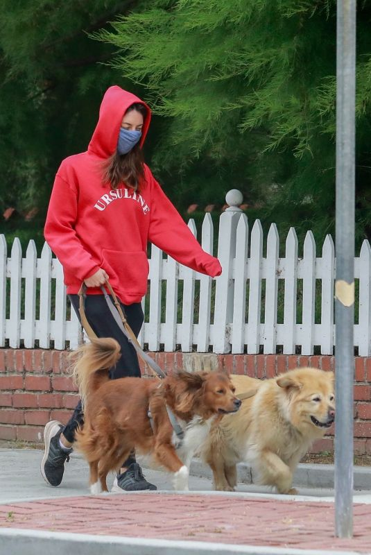 AUBREY PLAZA Wearing a Red Hoodie Out With Her Dogs in Los Feliz 06/28/2020