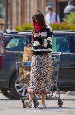 DAKOTA JOHNSN Out Shopping in Malibu 06/28/2020