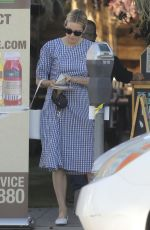 KELLY RUTHERFORD Out with Her Dogs in Santa Monica 06/10/2020