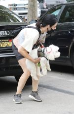 LUCY HALE Out with Her Dog Elvis in Los Angeles 06/25/2020