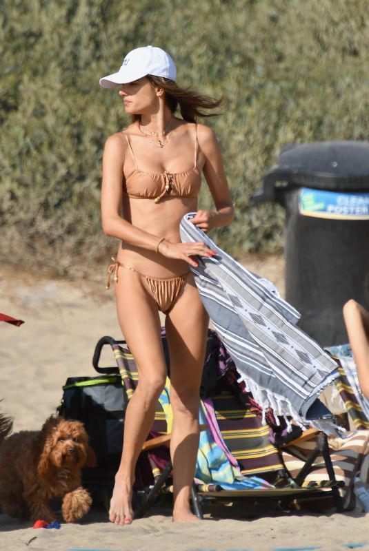 ALESSANDRA AMBROSIO in Bikini at a Beach in Malibu 07/26/2020