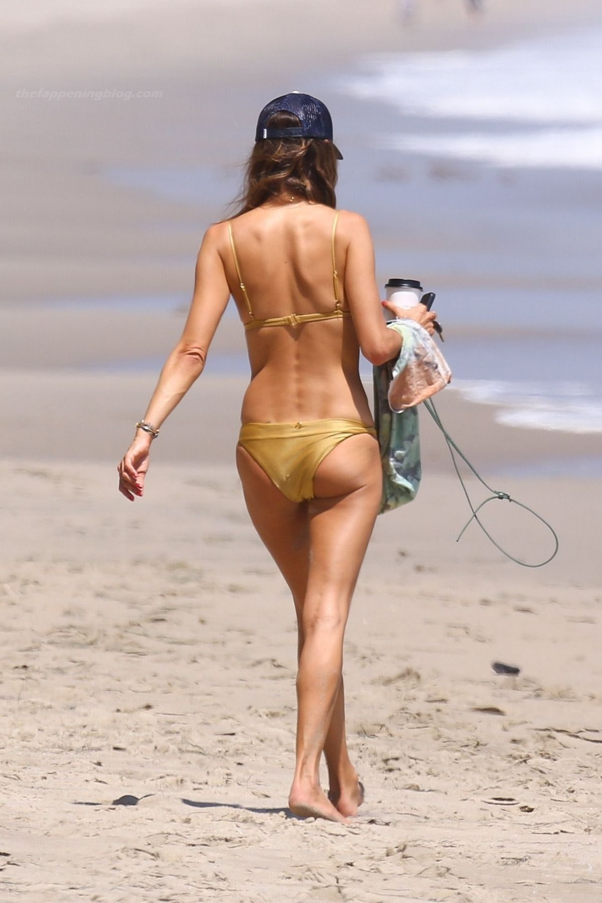 Alessandra ambrosia pregnant bikini