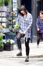 DAISY LOWE Out with Her Dog in Primrose Hill 07/09/2020