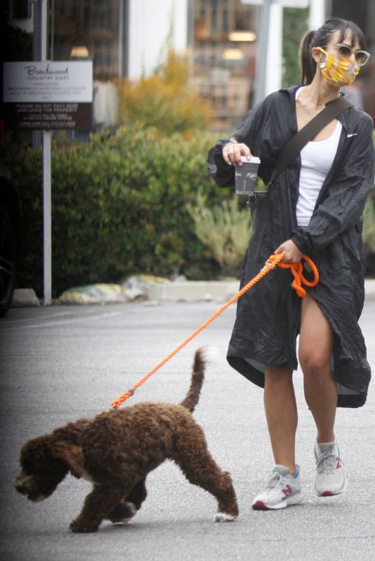 JORDANA BREWSTER Out with Her Dog in Los Angeles 07/24/2020