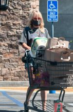 MALIN AKERMAN in a Denim Shorts Out Shopping in Los Angeles 07/12/2020