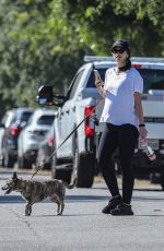 Pregnant KATHERINE SCHWARZENEGGER Out with Her Dog in Santa Monica 07/06/2020
