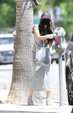 ROSELYN SANCHEZ Wearing a Mask Out in Los Angeles 07/16/2020