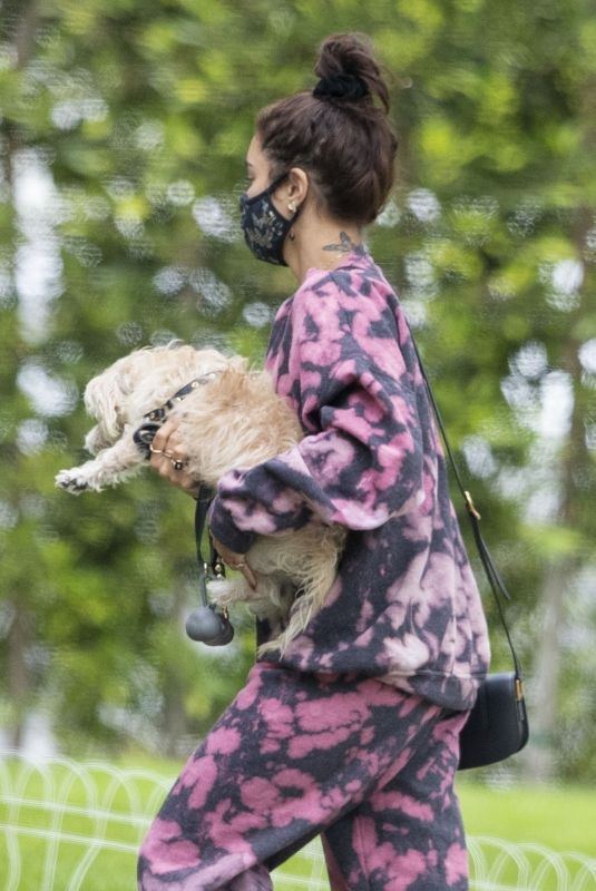 VANESSA HUDGENS Out with her Dog in Beverly Hills 07/22/2020