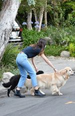 ANA DE ARMAS and Ben Affleck Out with Their Dog in Brentwood 08/13/2020