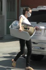 ANGELINA JOLIE Shopping at Petco in Los Feliz 08/28/2020