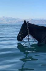 FREYA ALLAN in Bikini at a Horse - Instagram Photos 07/31/2020