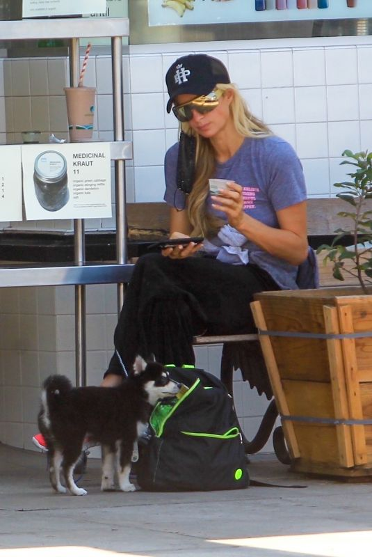 PARIS HILTON Out Shopping with Her Dog in Hollywood 08/25/2020