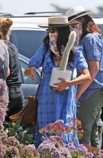 ABIGAIL SPENCER Shopping at Farmers Market in Montecito 09/05/20
