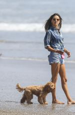 ALESSANDRA AMBROSIO Out with Her Dog at a Beach in Malibu 09/04/2020