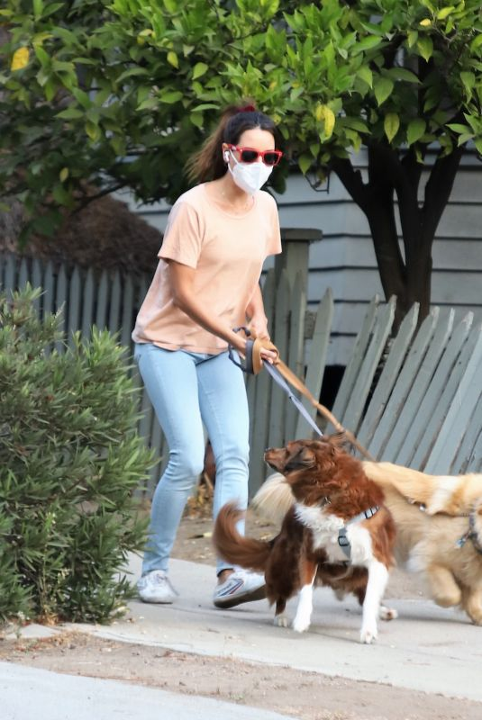 AUBREY PLAZA Out with Her Dogs in Los Angeles 09/29/2020