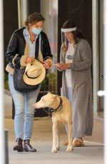 DREW BARRYMORE Comes to the Rescue of a New Yorker Whose Dog was Allegedly the Victim of a Car Hit-and-run 09/22/2020