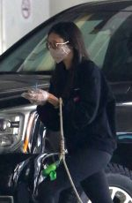 NINA DOBREV Arrives with her Dog at Airport in Vancouver 09/11/2020