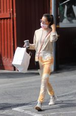 ALESSANDRA AMBROSIO Leaves Brentwood Country Mart 10/21/2020