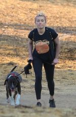 AMBER HEARD Out Hiking with Her Dog in Los Angeles 10/17/2020