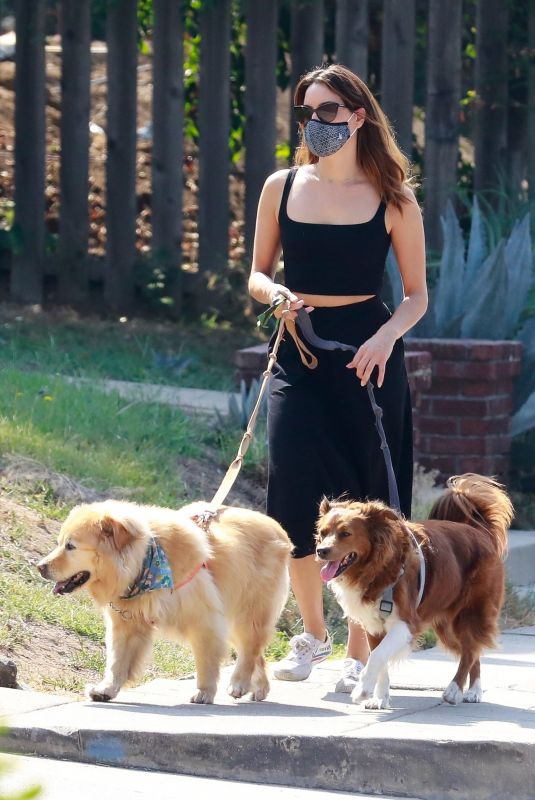 AUBREY PLAZA Out with Her Dogs in Los Angeles 10/04/2020