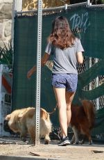 AUBREY PLAZA Out with Her Dogs in Los Angeles 10/17/2020