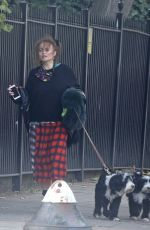 HELENA BONHAM CARTER and Rye Dag Holmboen Out with Their Dogs in London 10/07/2020